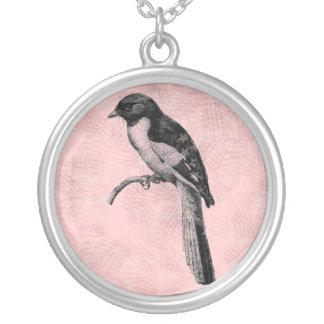 Pájaro en una perca colgante redondo