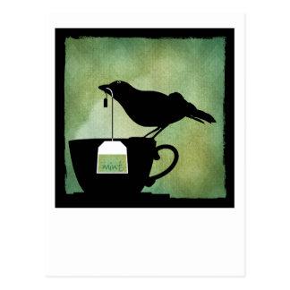 Pájaro en una postal de la taza de té