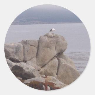 Pájaro en una roca pegatina redonda