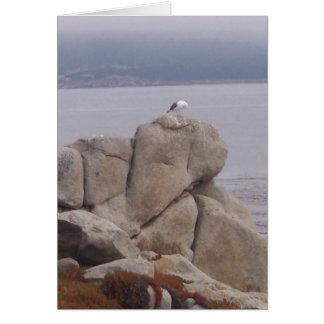 Pájaro en una tarjeta de felicitación de la roca (