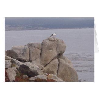 Pájaro en una tarjeta de nota de la roca (espacio