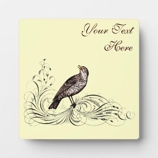 Pájaro en una voluta (Brown) Placa Para Mostrar