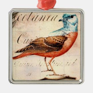 Pájaro enmarcado plata 1 del vintage del ornament ornamente de reyes