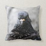 Pájaro enojado almohada