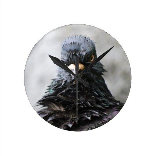 Pájaro enojado reloj de pared