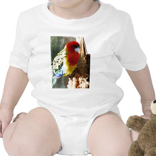 Pájaro exótico camiseta