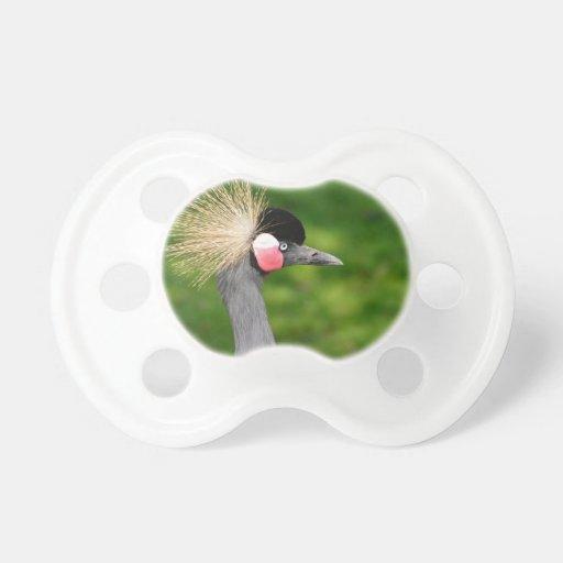 Pájaro exótico chupete
