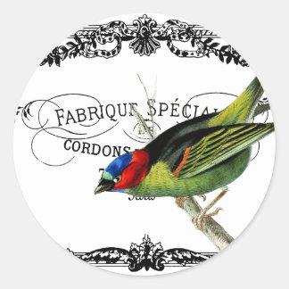 Pájaro exótico, tipografía del vintage pegatinas redondas