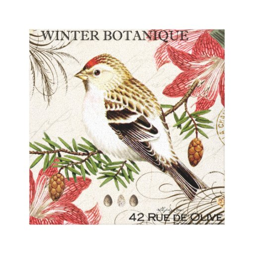 pájaro francés del invierno del vintage moderno lona envuelta para galerías