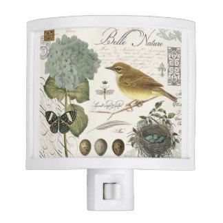 pájaro francés y jerarquía del vintage moderno lámparas de noche
