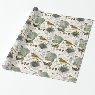 pájaro francés y jerarquía del vintage moderno papel de regalo