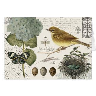 pájaro francés y jerarquía del vintage moderno tarjeta pequeña