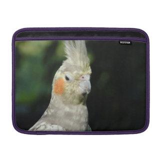 Pájaro Funda MacBook