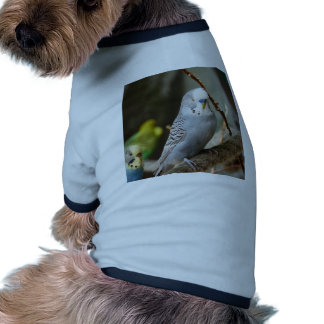 Pájaro gris de Budgie Camisa De Perrito
