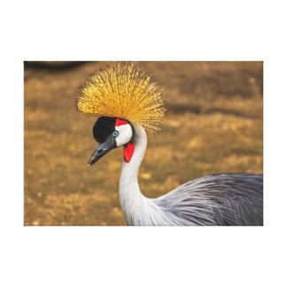 Pájaro gris hermoso de la grúa impresion de lienzo