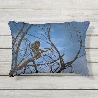 Pájaro hermoso, colorido en un árbol, almohada del cojín decorativo