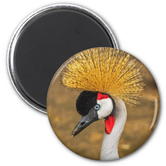 Pájaro hermoso de la grúa imán redondo 5 cm