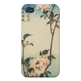 Pájaro japonés en la caja del teléfono de la rama iPhone 4 carcasas