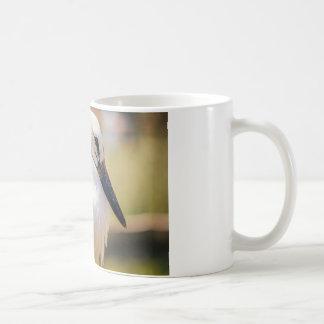Pájaro joven de la cigüeña, fotografía animal del taza