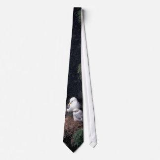 Pájaro/Kittiwakes Negro-legged encendido Corbata Personalizada