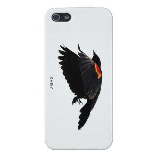 Pájaro libre iPhone 5 cobertura