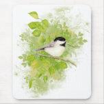 Pájaro lindo del Chickadee en árbol de álamo Alfombrilla De Ratones
