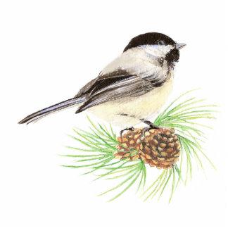 Pájaro lindo del Chickadee, naturaleza, fauna, ani Fotoescultura Vertical