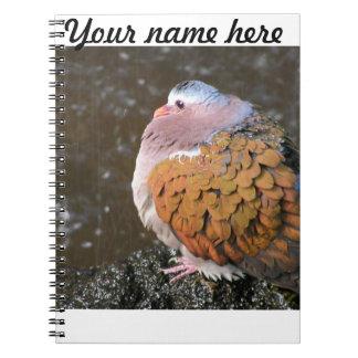 Pájaro lindo cuadernos