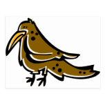 Pájaro lindo postales