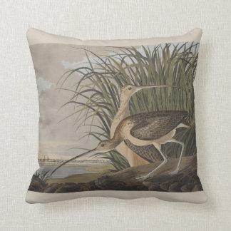 Pájaro longirrostro de la lavandera de zarapito de cojín decorativo