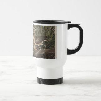 Pájaro longirrostro de la lavandera de zarapito de tazas de café