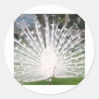 pájaro majestuoso pegatina redonda