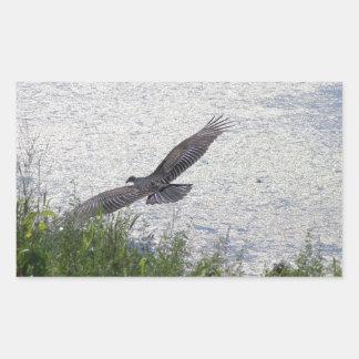 Pájaro majestuoso pegatina rectangular