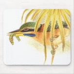 Pájaro Mousepad del martín pescador de Goulds Tapete De Ratón