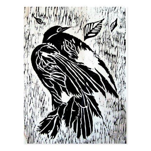 Pájaro muerto postal