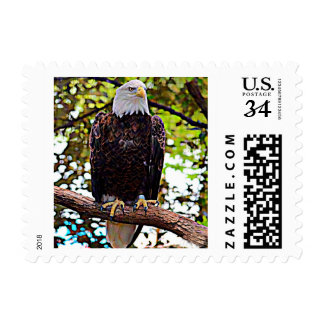 Pájaro nacional calvo de Eagle (Estados Unidos) Timbres Postales