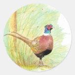 Pájaro Necked del faisán del anillo, fauna, natura Pegatinas Redondas