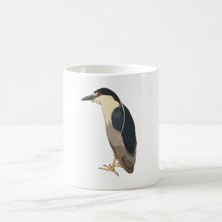 pájaro Negro-coronado de la garza de noche Taza Básica Blanca
