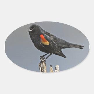 Pájaro negro de alas rojas pegatina ovalada