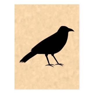 Pájaro negro del cuervo en un modelo del pergamino postal