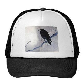 Pájaro negro del cuervo gorros