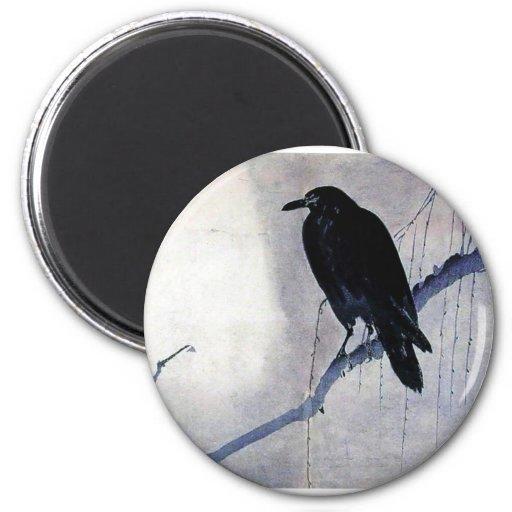 Pájaro negro del cuervo imán de nevera