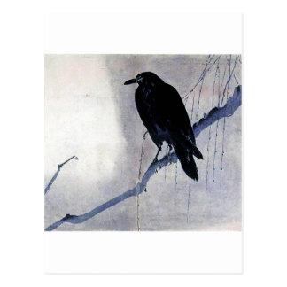 Pájaro negro del cuervo postal