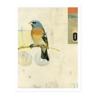 Pájaro No.1 Tarjetas Postales