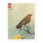 Pájaro No.2 Tarjeta Postal
