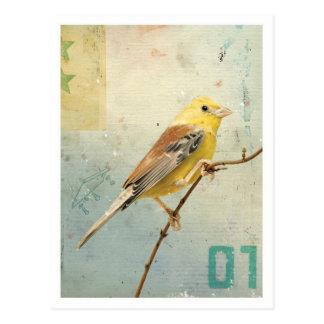 Pájaro No.4 Postal