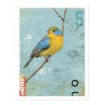 Pájaro No.5 Postales