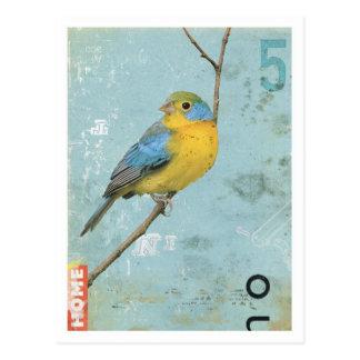 Pájaro No 5 Postales