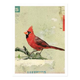 Pájaro No.6 Postal
