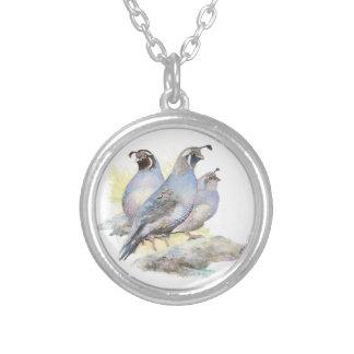 Pájaro original de las codornices de California de Grímpola